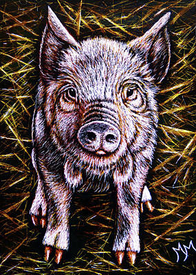 Drawing - Piggy by Monique Morin Matson