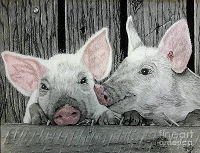 Drawing - Piglets by Terri Mills