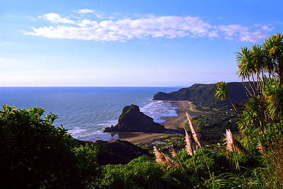 Pampas Grass Photograph - Piha Panorama by Kevin Smith