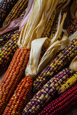 Indian Corn Wall Art - Photograph - Pile Of Indian Corn by Garry Gay