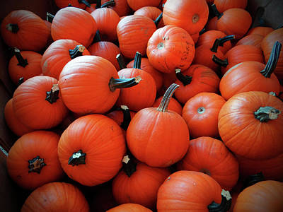 Photograph - Pile Of Pumpkins by Jamie Johnson