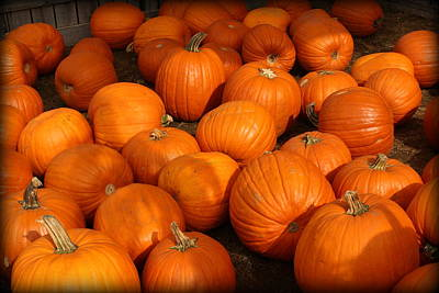 Photograph - Pile Of Pumpkins by Suzanne DeGeorge