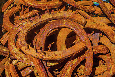 Good Luck Photograph - Pile Of Rusty Horseshoes by Garry Gay