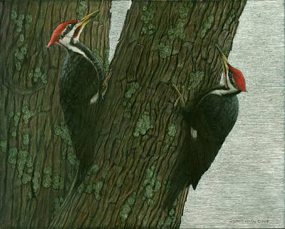 Painting - Pileated Woodpecker Pair by Susan Donley