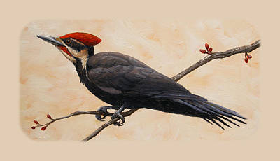 Woodpecker Painting - Pileated Woodpecker Phone Case by Crista Forest