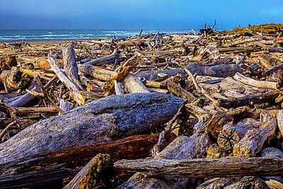 Weatherworn Photograph - Piles Of Driftwood On Beach by Garry Gay