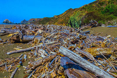 Piles Of Driftwood Sonoma Beach Art Print