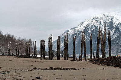 Photograph - Pilings At Sandy Beach - Low Tide by Cathy Mahnke