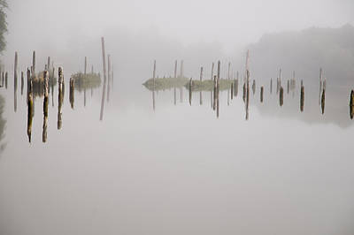Photograph - Pilings And Fog by Robert Potts