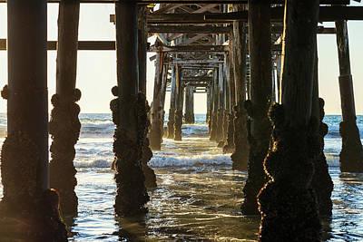 Photograph - Pilings And The Pier by Joseph S Giacalone