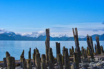 Photograph - Pilings by David Arment