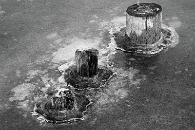 Photograph - Pilings In Ice 2017 6 Bw by Mary Bedy