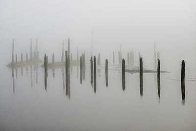 Photograph - Pilings In The Fog by Robert Potts