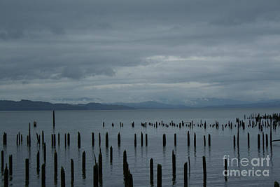 Photograph - Pilings On Columbia River by Suzanne Lorenz
