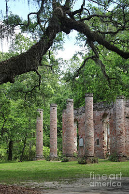 Civil War Site Photograph - Pillars Of Sheldon Church Ruins by Carol Groenen
