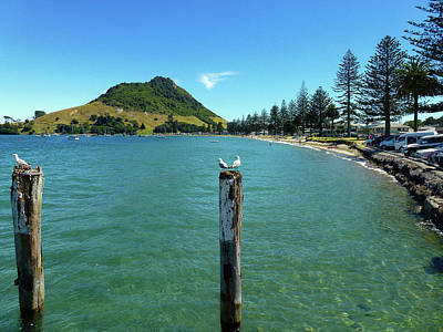 Photograph - Pilot Bay Beach 1 - Mt Maunganui Tauranga New Zealand by Selena Boron