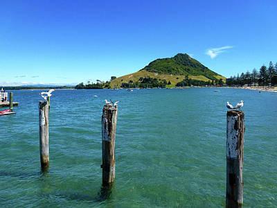Photograph - Pilot Bay Beach 3 - Mt Maunganui Tauranga New Zealand by Selena Boron