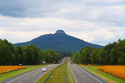 Photograph - Pilot Mountain Amid Cosmos by Kathryn Meyer