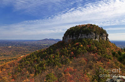 Photograph - Pilot Mountain by Jill Lang
