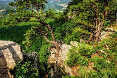Photograph - Pilot Mountain North Carolina  -  Tenacioustreesvalleyviewlab185853 by Frank J Benz