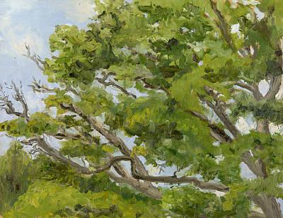 Wall Art - Painting - Pin Oak by Katherine Farrell