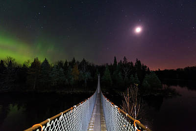 Photograph - Pinawa Suspension Bridge by Nebojsa Novakovic
