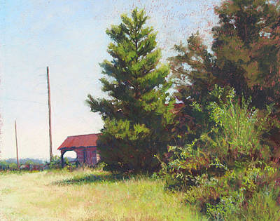 Painting - Pine And Old Stable by Marsha Savage