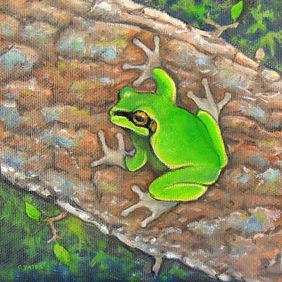 Pine Barrens Painting - Pine Barrens Tree Frog by Charles Yates
