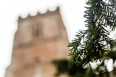 Photograph - Pine Branch With Blurred Church In Background by Jacek Wojnarowski