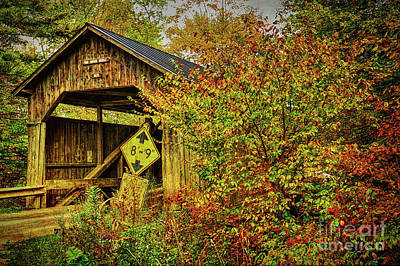 Pine Brook Bridge Art Print
