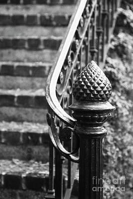 Photograph - Pine Cone Staircase by Heather Green