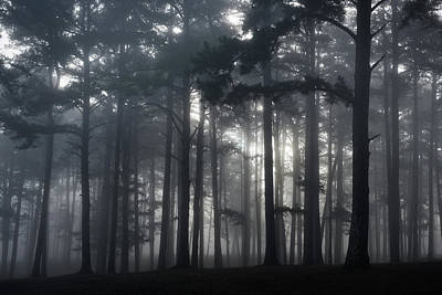 Photograph - Pine Forest Fog by Bud Simpson