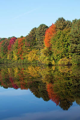 Photograph - Pine Lake In The Autumn by Karol Livote