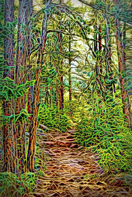 Digital Art - Pine Path Visions by Joel Bruce Wallach
