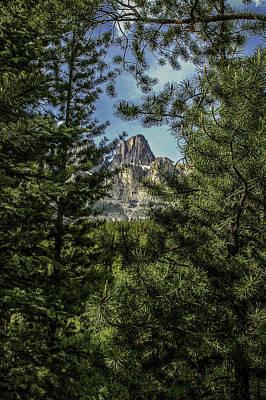 Impressionist Landscapes - Pine Picture Frame by Joseph Yvon Cote