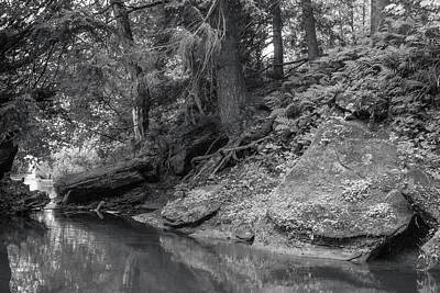 Photograph - Pine River, The Driftless Area by Mark Mille