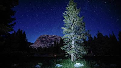 Photograph - Pine Stars Lambert Dome Yosemite by Lawrence S Richardson Jr