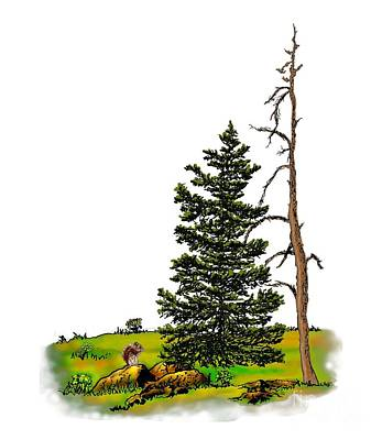 Mixed Media - Pine Tree Nature Watercolor Ink Image 3         by Dale E Jackson