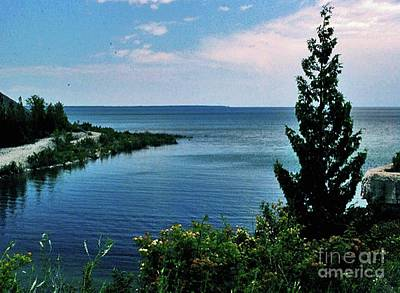 Photograph - Pine Tree On Lake Huron by Gary Wonning
