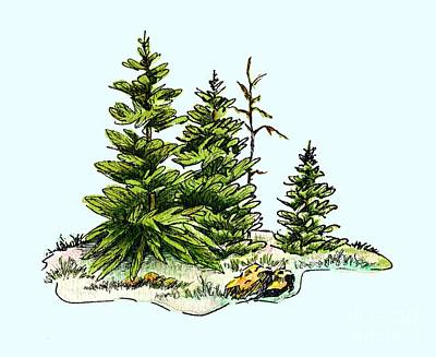 Mixed Media - Pine Tree Watercolor Ink Image I         by Dale Jackson