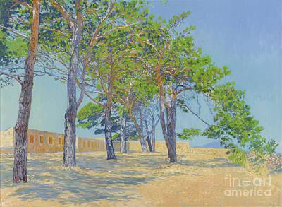 Pine Trees In Fortezza. Crete.  Original by Simon Kozhin
