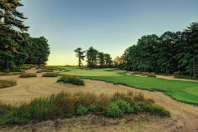 Golf Drawing - Pine Valley by Dom Furore