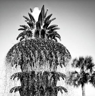 Photograph - Charleston Pineapple Fountain Profile by John Rizzuto