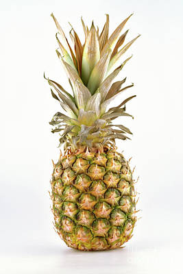 Fruits Photograph - Pineapple by George Atsametakis
