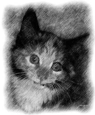Digital Art - Pineapple Kitty Drawing by Artful Oasis