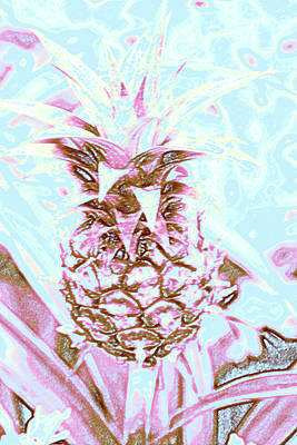 Photograph -  Pineapple by Lali Kacharava