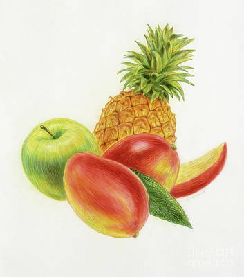 Mango Drawing - Pineapple, Mango And Apple by Michael Seleznev