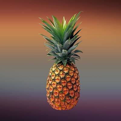 David Drawing - Pineapple by Movie Poster Prints