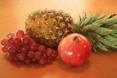 Pineapple Pomegranate Grapes Art Print by Donna Kennedy