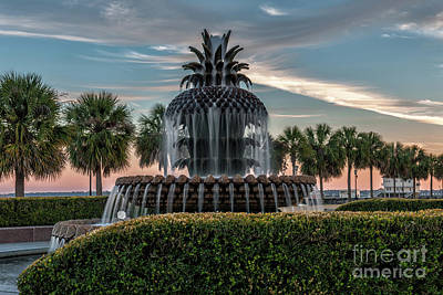 Photograph - Pineapple Suprise by Dale Powell